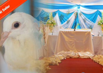 wedding-photo-video-package-1
